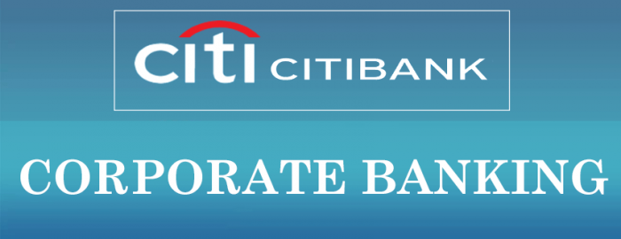 Helpful Guide For Citibank India Banking