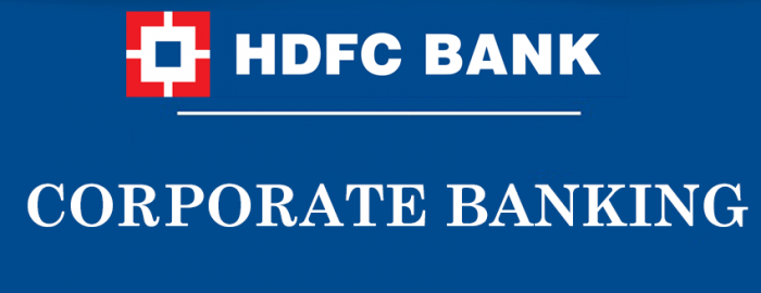 An Expert Guide for HDFC Banking