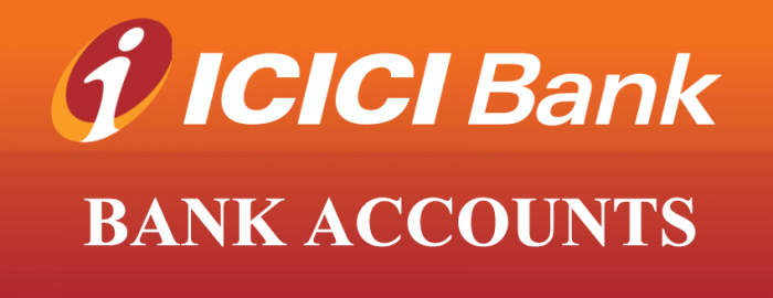Easy Guide On How To Use ICICI Bank Accounts