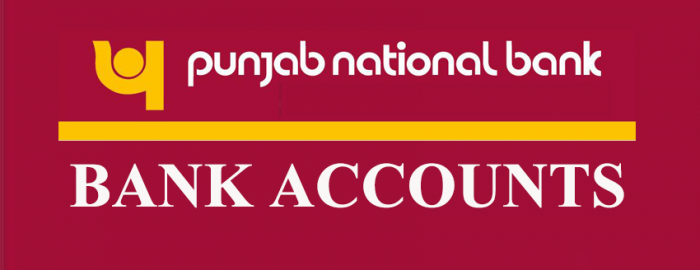 Punjab National Bank Accounts Expert Guide
