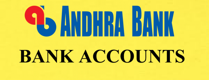 An Expert Guide For Andhra Bank Accounts