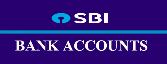 Brief Guide For SBI Accounts